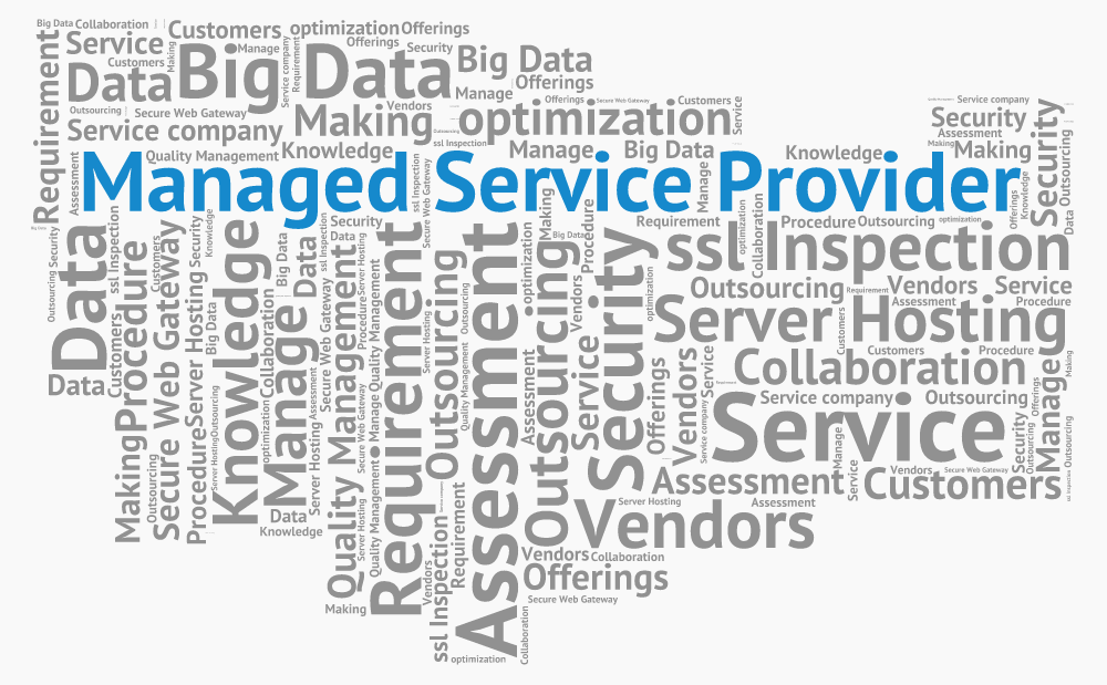 managed_service_provider1